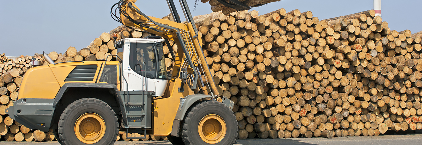 Logging machine in front of log pile
