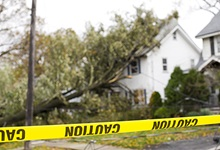 Caution tape in front of downed tree and power lines