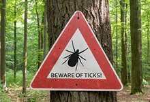 Summer Vacation or Tick Paradise? - Beware of Ticks!