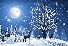 Woodland scene with midnight blue sky and full moon