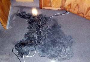 Burnt carpet due to powering humidifier with incorrect extension cord
