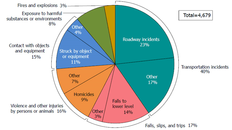 Pie chart showing cause of fatalities.