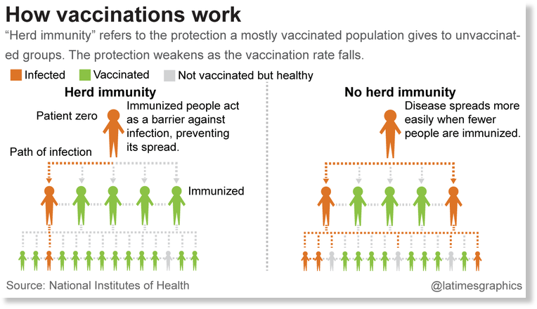 Diagram showing herd immunity.
